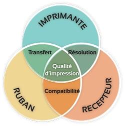 3 éléments essentiels à la garantie d'une impression de qualité : une imprimante Transfert Thermique, un support d'impression et un rouleau encré.